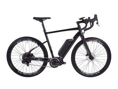 Raleigh Mustang Comp e-Bike